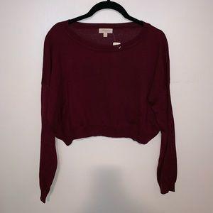 Ambiance L/S crop top sweater sz M! new!